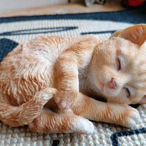 Kattenbeeldje rode kat die slaapt, geschikt voor binnen en buiten.