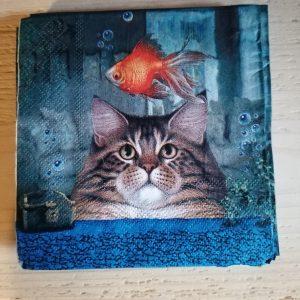 Katten-Servetten-Vis-Aquarium
