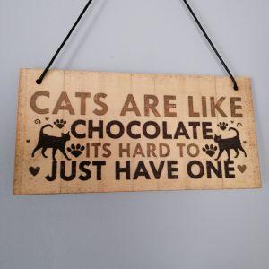 Tekst-Bordje-Hout-Katten.