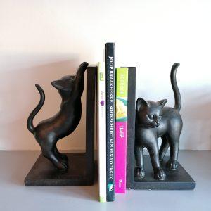 Boekensteunen katten.