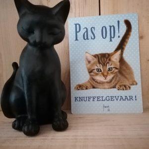 Decoratief kattenbeeld.