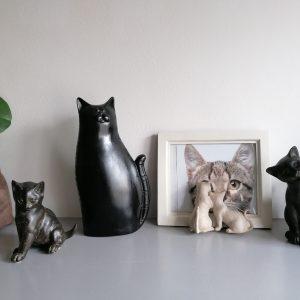 Kattenlijstje.