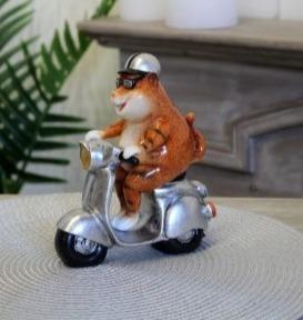 Rode kat op scooter