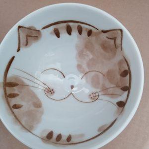 Schaal kat