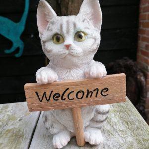 Beeld poes welkom
