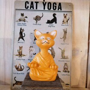 Kattenbeeld meditatie