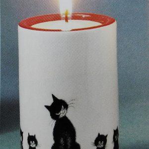 Sfeerlicht katten