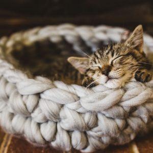Kattenmand grijs wol