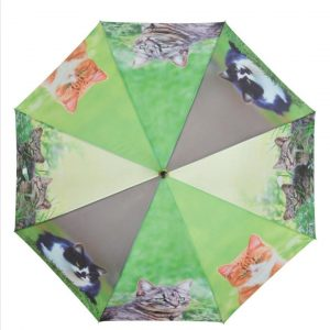 Kattenparaplu