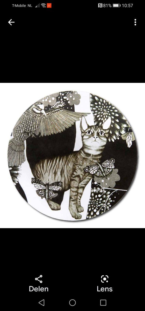 Onderzetter kat